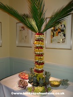 Fruit Palm Tree